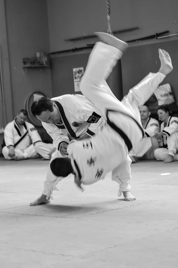 06sport_hanmudo_CE2013-3